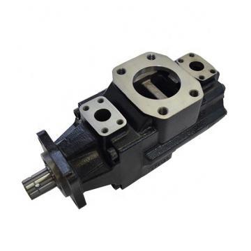 DENISON T6ED-052-038-1R00-C100 vane pump